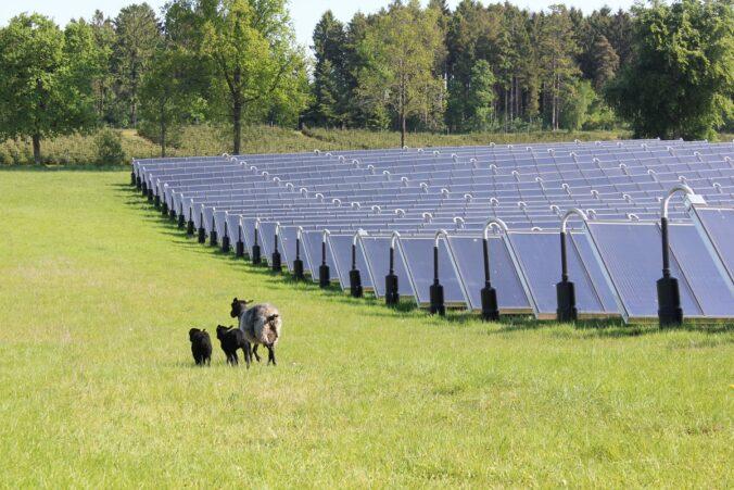 Zu sehen ist ein Solarheizwerk in Dänemark. Häufig sind diese Anlagen mit einem Solarwärme-Speicher im Wärmenetz ausgestattet.